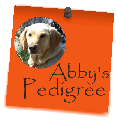 Abby's_Pedigree_postit
